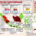 Sekolah Tutup dan Penerbangan Dibatalkan Akibat Kebakaran Hutan di Sumatra dan Kalimantan